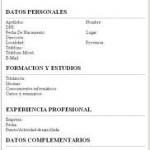 Curriculum Vitae en Ingles
